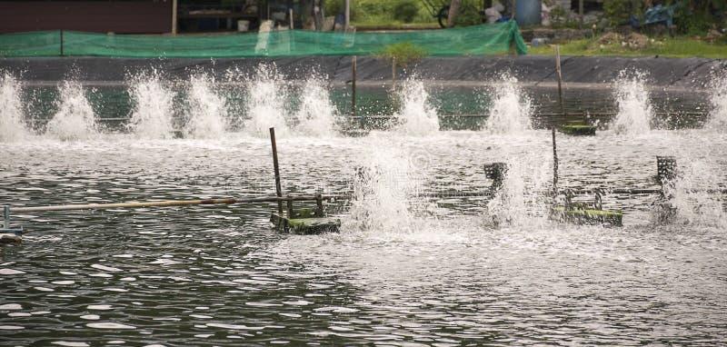 Turbina de la aireación del agua en el cultivo acuático fotografía de archivo