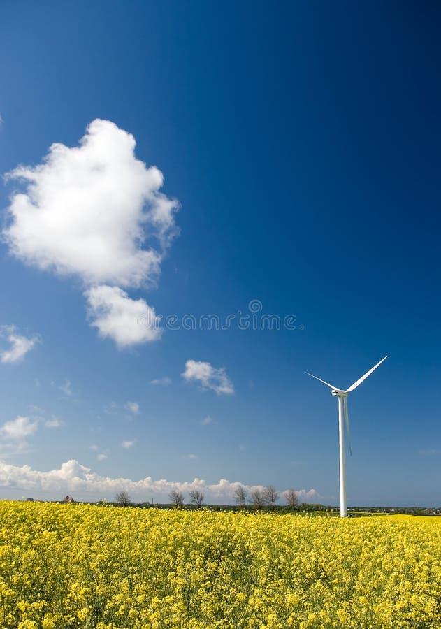 Turbina de vento, campo amarelo. imagens de stock