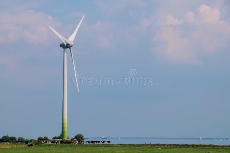 Turbina de viento que genera energía en paisaje holandés foto de archivo