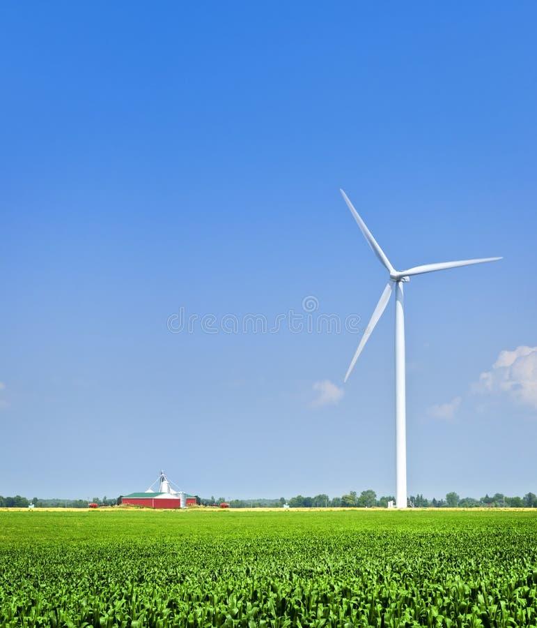 Turbina di vento nel campo fotografia stock libera da diritti