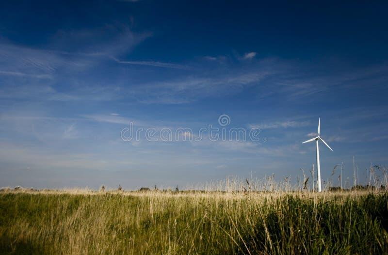 Download Turbina Di Vento Sola Nel Campo Immagine Stock - Immagine di energia, rinnovabile: 3891913