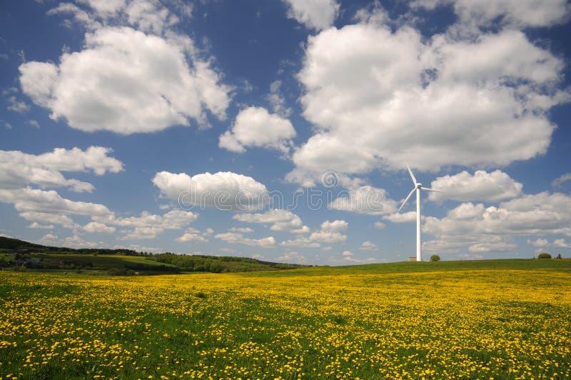 Turbina di vento su un prato fotografia stock libera da diritti