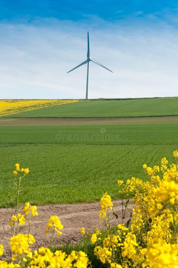 Turbina eólica imagem de stock