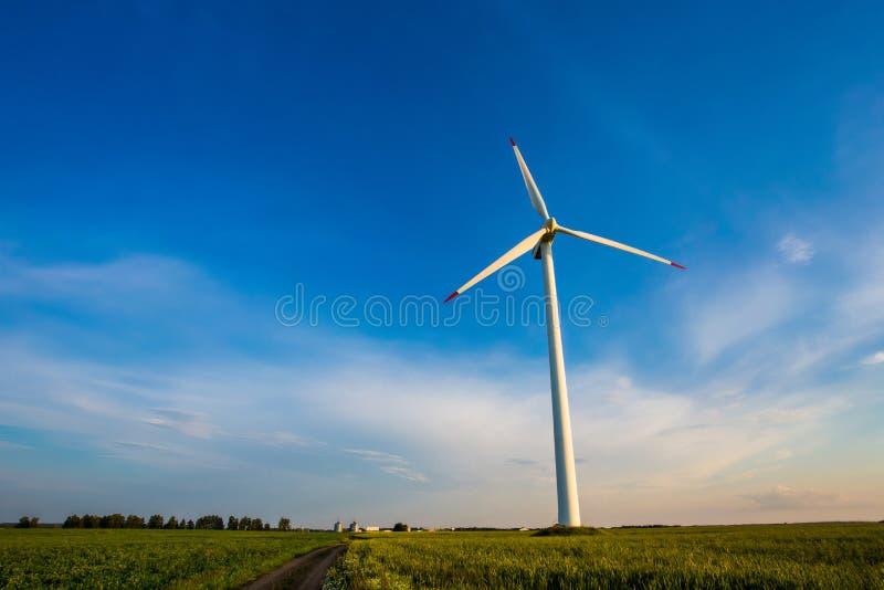Turbina eólica grande estabelecida no campo de milho no campo Paisagem bonita fotos de stock