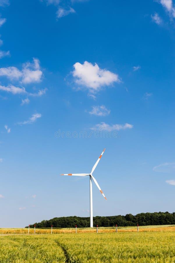 Turbina eólica no campo de milho do outono fotos de stock