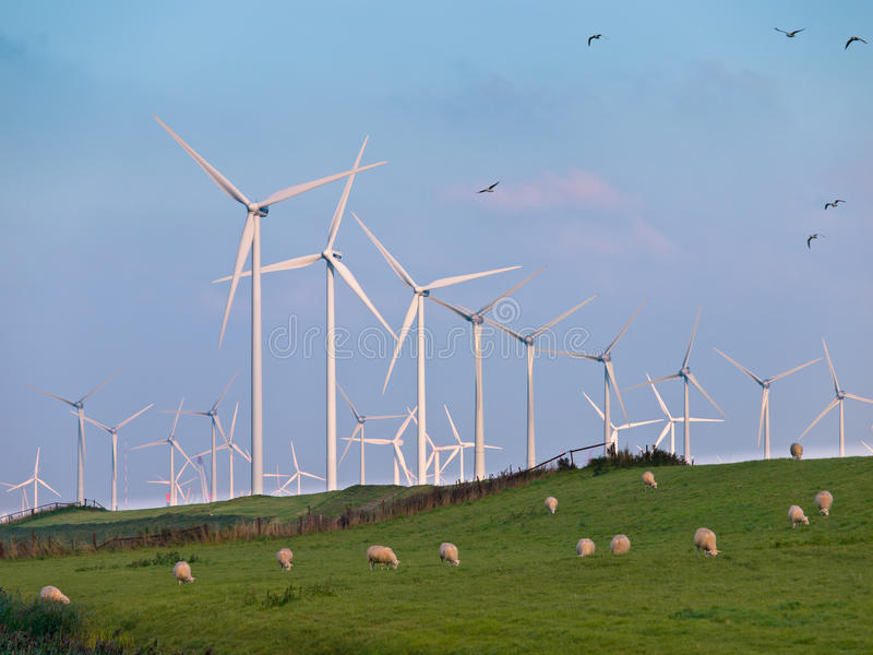 Turbina y pájaros de viento imagenes de archivo