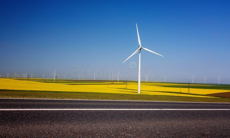 Turbinas de vento, campo amarelo Campos com moinhos de vento rapeseed fotos de stock royalty free