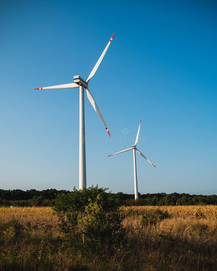 Turbinas de vento no campo de milho imagens de stock royalty free