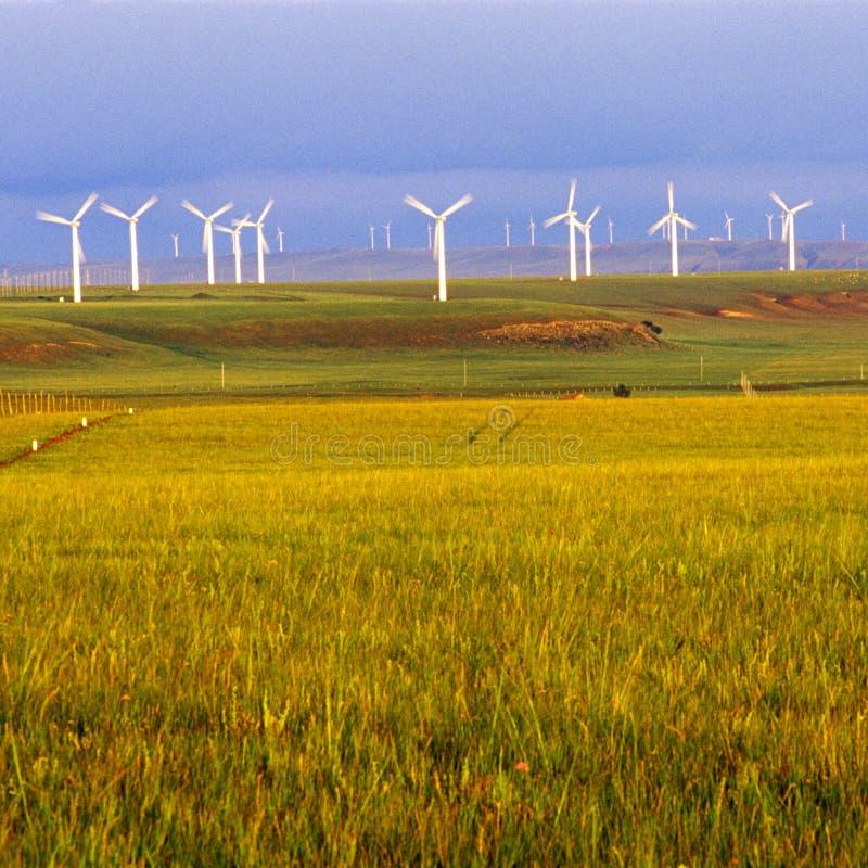 Turbinas de viento foto de archivo