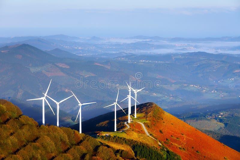 Turbinas de viento, campo amarillo fotografía de archivo libre de regalías