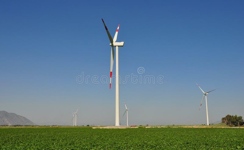 Turbinas de viento detrás de campos del algodón fotos de archivo