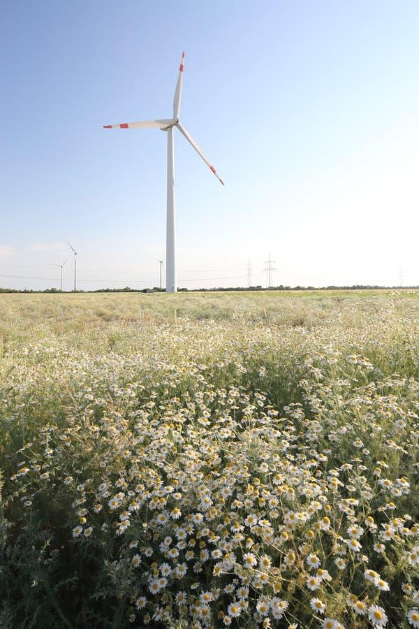 Turbinas de viento en el campo imagenes de archivo