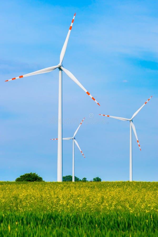 Turbinas de viento en el campo imagen de archivo