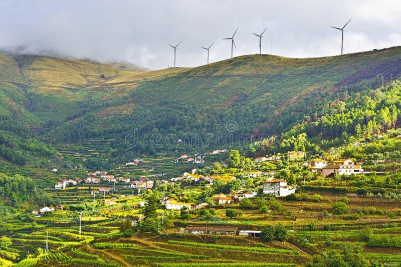 Turbinas de viento sobre viñedos imagenes de archivo