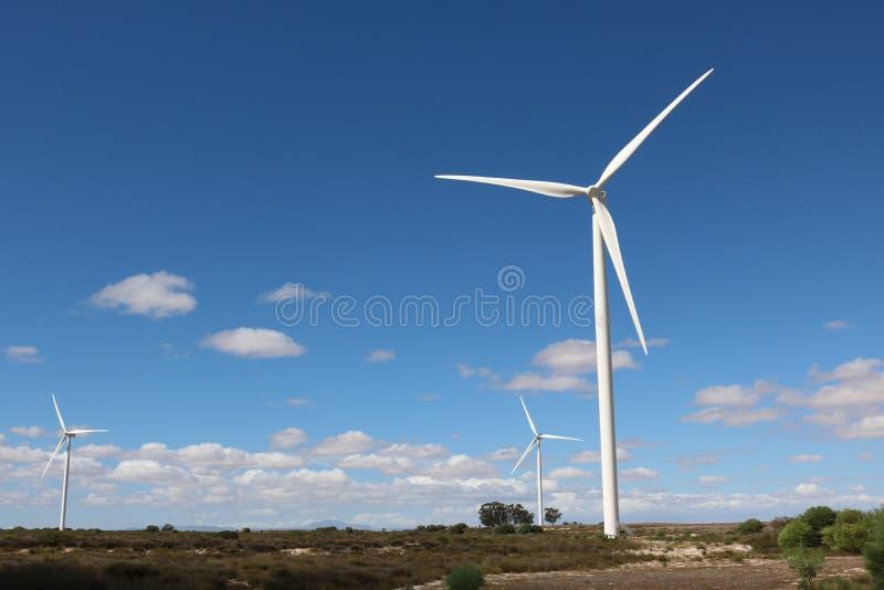 Turbinas eólicas, cabo ocidental, África do Sul foto de stock