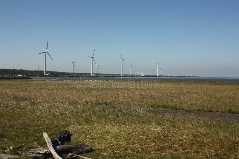 Turbinas eólicas no campo de grama imagem de stock royalty free