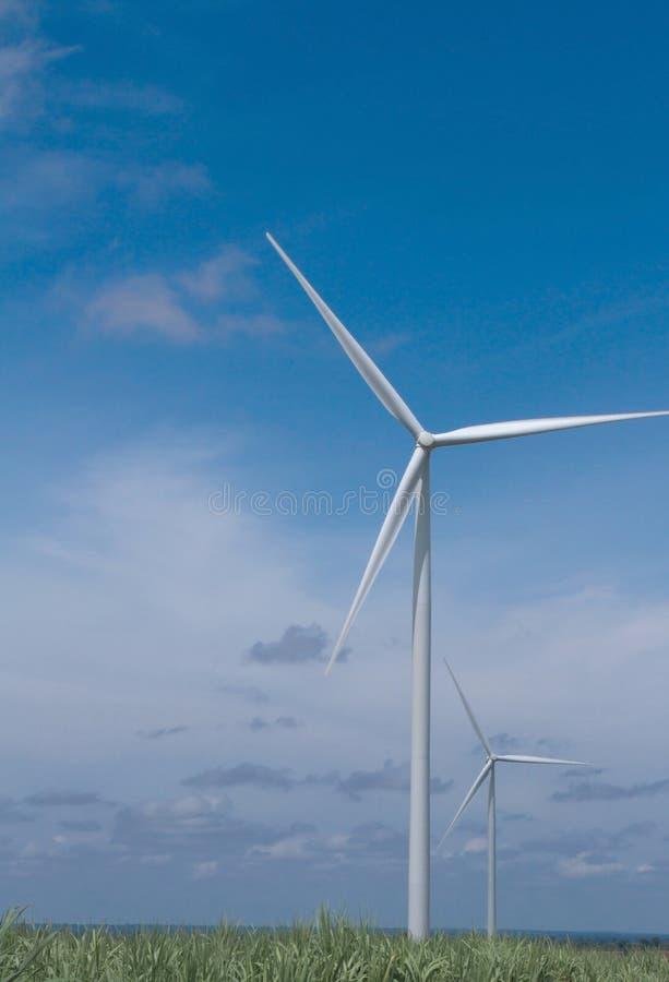 Turbinas eólicas no campo a gerar a eletricidade fotos de stock royalty free