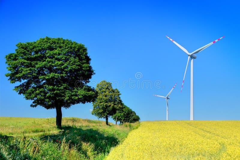 Turbinas e árvores de vento imagem de stock