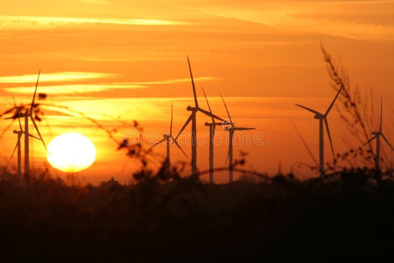 Turbine di vento al tramonto immagine stock libera da diritti