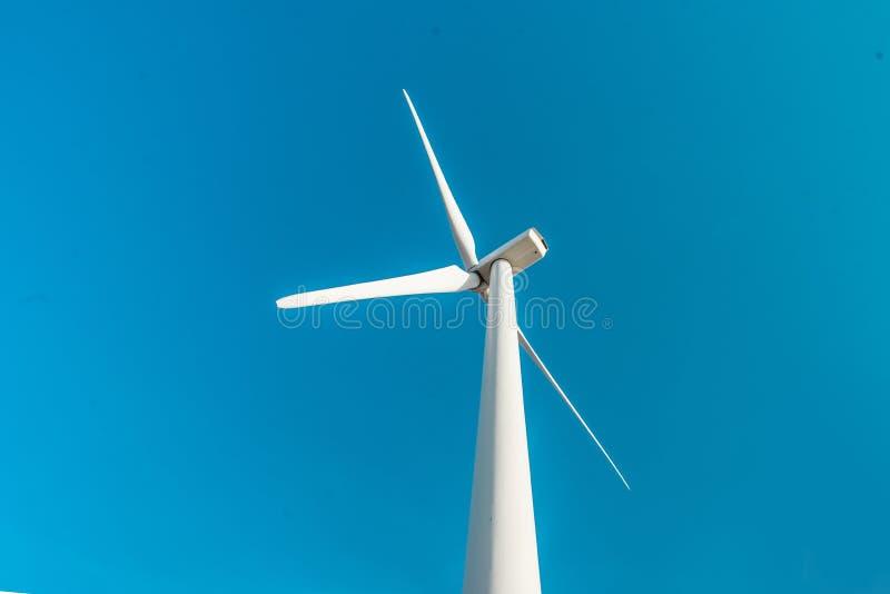 Turbine di vento, campo giallo Vento di ecologia contro il fondo del cielo nuvoloso con la c fotografia stock