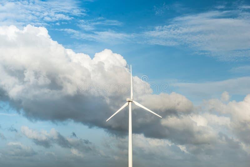 Turbine di vento, campo giallo Vento di ecologia contro il fondo del cielo nuvoloso con la c fotografia stock libera da diritti