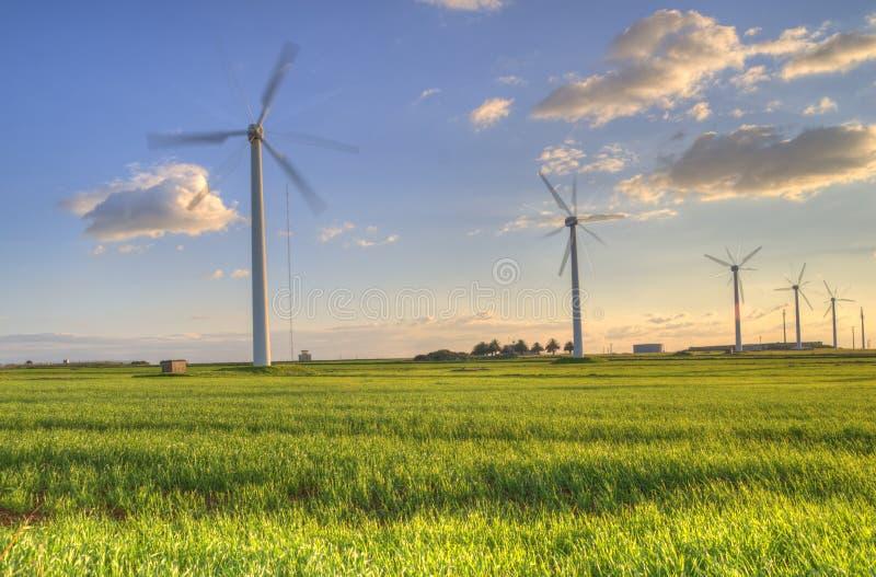 Turbine di vento nel tramonto verde del campo immagini stock