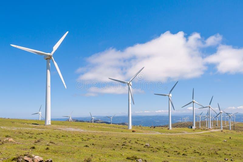 Turbine di vento nelle montagne Energia rinnovabile La Galizia, Spagna fotografia stock