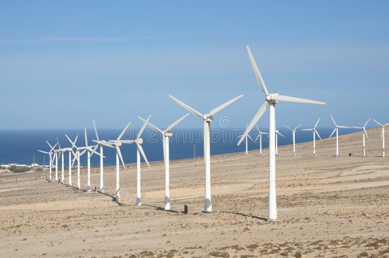 Turbine di vento sull'Isole Canarie Fuerteventura fotografia stock libera da diritti