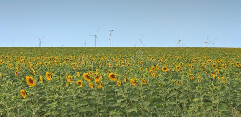 Turbine di vento in un campo immagini stock