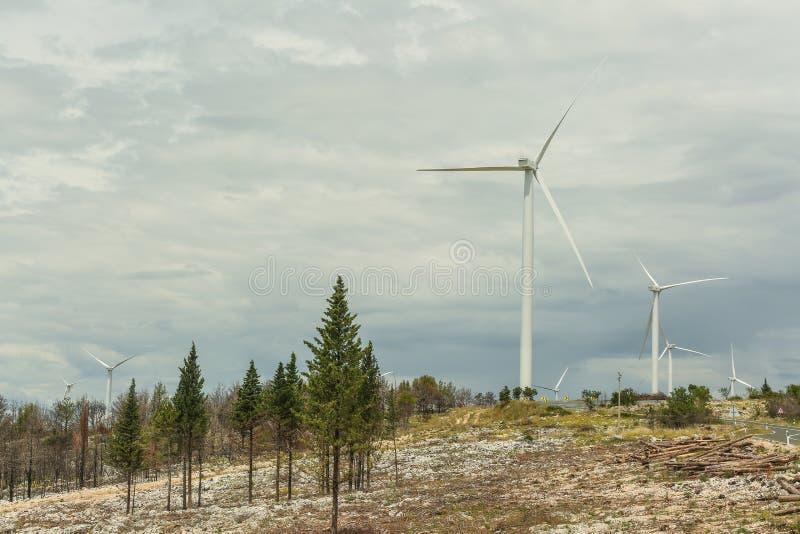 Turbiner för förnybara energikällorvindkraftväderkvarn royaltyfri foto