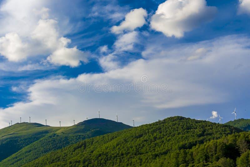 Turbiner för vindgeneratorer på sommarlandskap royaltyfria foton