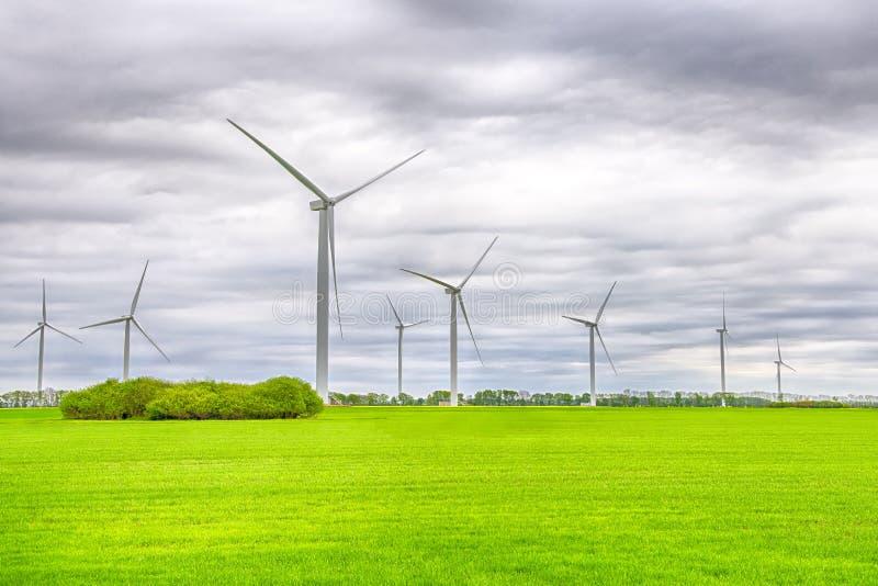 Turbiner för vindkraftväxt på ett grönt fält under himmel med moln Grön energi, förnybara källor, räddningplanet royaltyfri bild