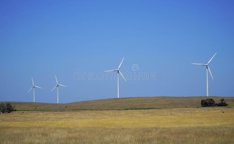 Turbiner för vindlantgård - förnybar ren grön energi arkivbilder