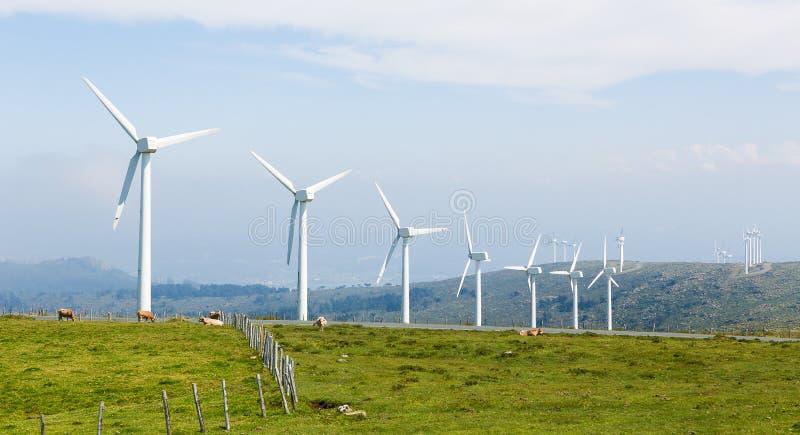 Turbines de vent à une ferme de vent en Galicie, Espagne image libre de droits