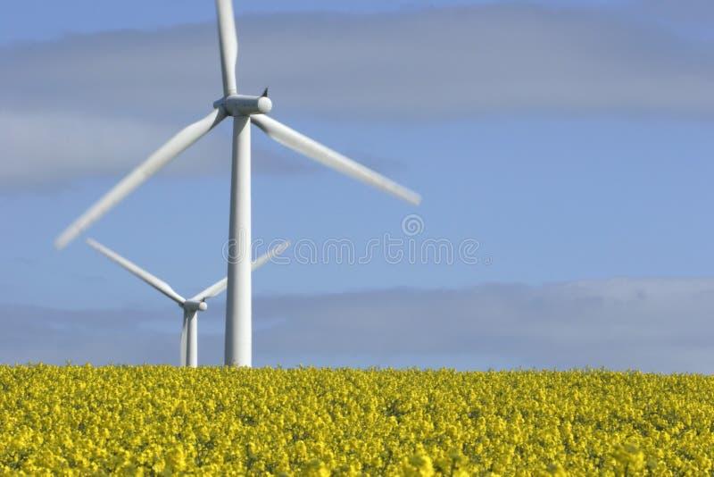 Download Turbines de vent photo stock. Image du électricité, produisez - 730560
