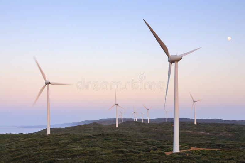 Turbines de vent avant aube, vent Farn, Australie occidentale d'Albany photos libres de droits