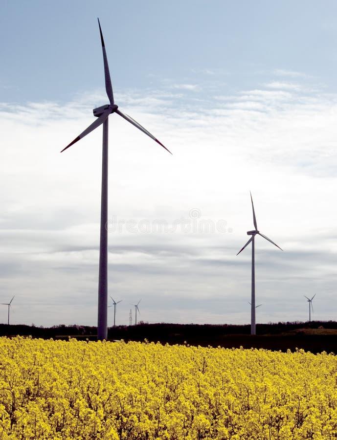 Turbines de vent, champ jaune. photos stock