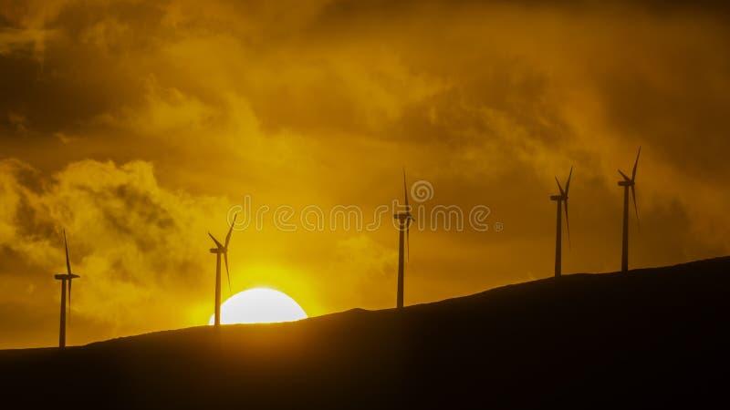 Turbines de vent contre un coucher du soleil chez Maui Hawaï Etats-Unis image stock