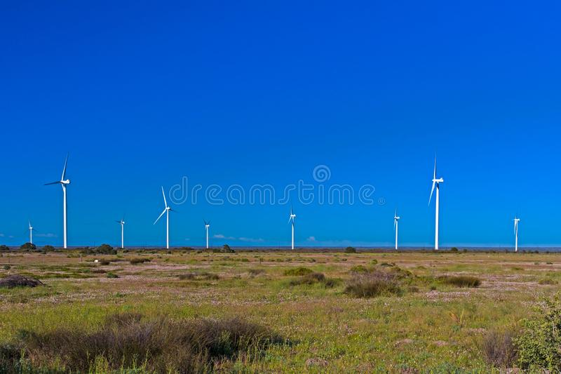 Turbines de vent dans le domaine vert photographie stock