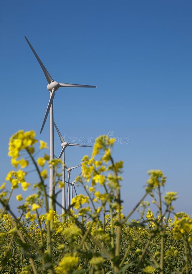 Turbines de vent dans le Lincolnshire image stock