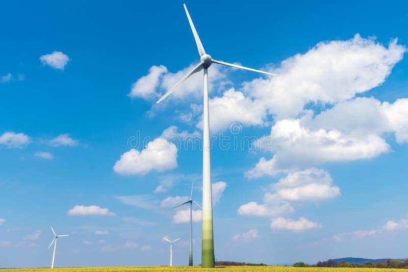 Turbines de vent et colza oléagineux fleurissant photo libre de droits