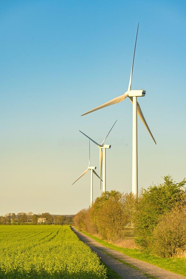 Turbines de vent sur le beau pré d'automne image stock
