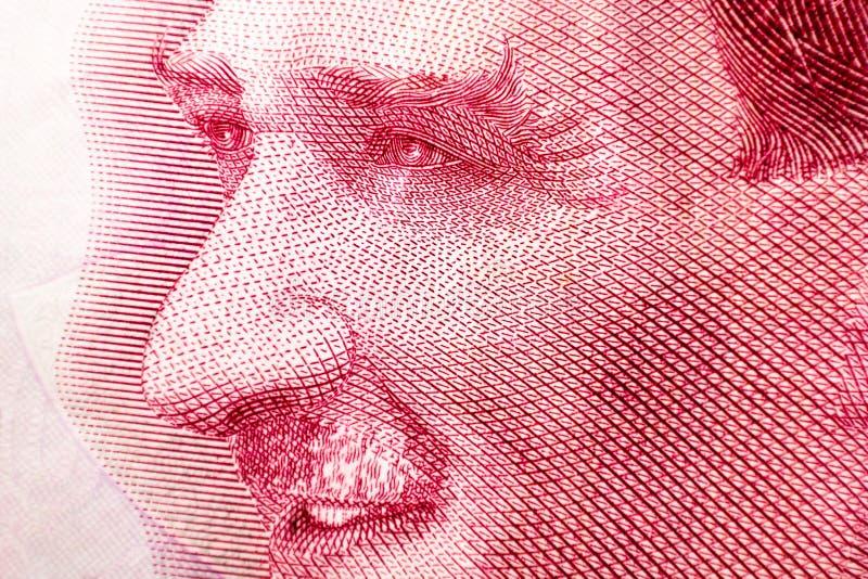 Turcja 10 lir 2009, Mustafa Kemal Ataturk Turecka pieniądze waluta zamknięta w górę Indycza gospodarka zdjęcie stock