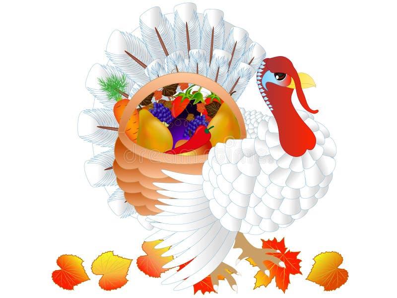 Turcja z warzywami i owoc w koszu ilustracja wektor