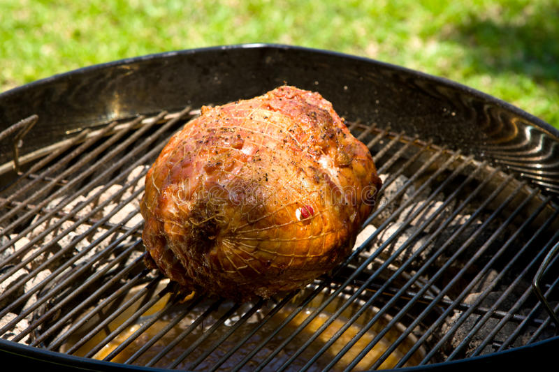 Turducken barbecue roast. On skottel braai woth charcoal briquettes stock photo