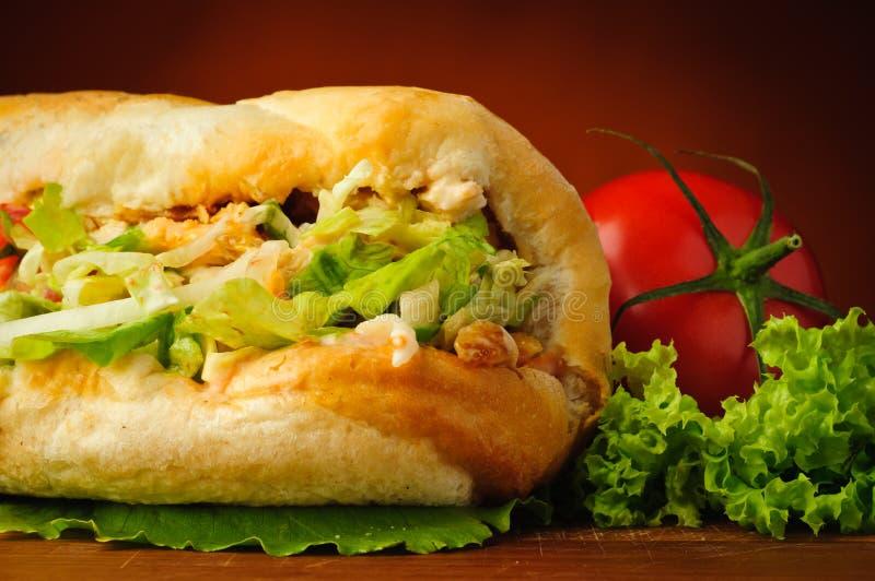 Turecki doner kebab obraz royalty free