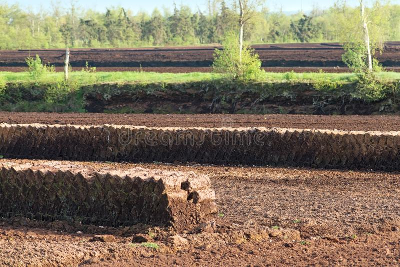 Turf block piles, industrial peat extraction on a raised bog lan. Dscape, nature destruction in the Venner Moor, Lower Saxony, Germany, selected focus stock images