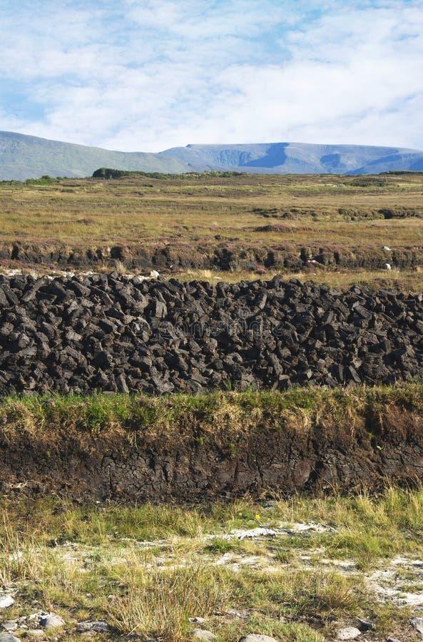 Turf Bog Royalty Free Stock Photo