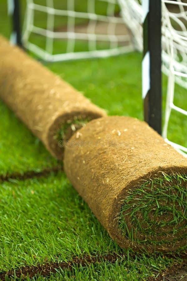 Turf grass rolls on football field. Closeup, shallow depth of field stock image