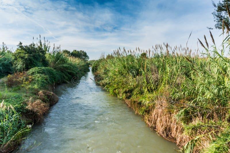 Turia flod i Valencia med vegetation och bl? himmel med moln arkivbild